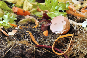 Question No.1: Do you have a compost?